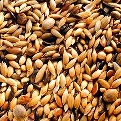 20kg Garvo 5371 Kanarienfutter ohne Rübsen