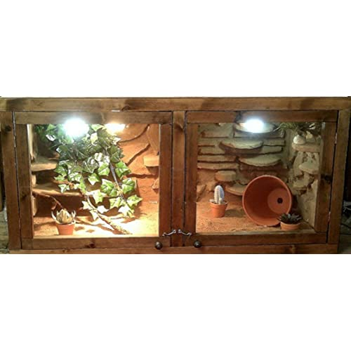 Bearded Dragon Vivarium Amazon Co Uk