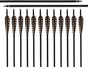 ARCHERY SHARLY 31Inch Carbon Targeting Practice Arrows Turkey Feather Fletching Arrows with Removable Tips for Recurve Traditional Long Bow