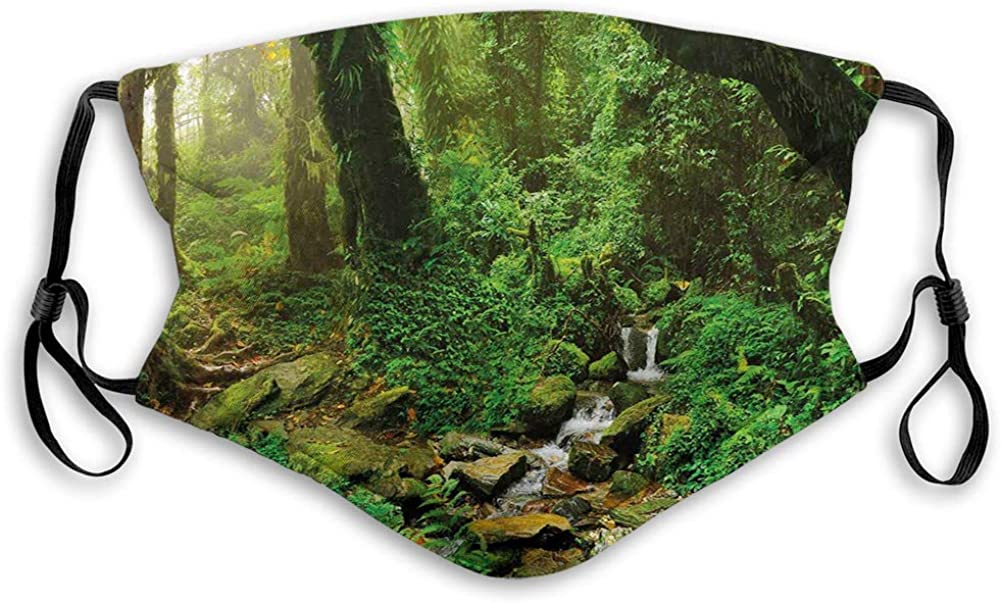 Rainforest Trees and Fresh Grass in Nepal Jungle Wildlife Mouth Cover for Women,Face Mask Reusable Washable Cloth for Men