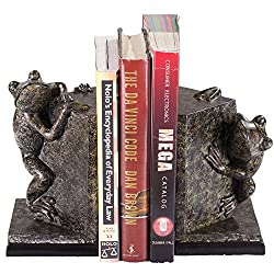 This Gift Ideas for Frog Lovers is perfect for any book lover!