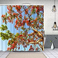 シャワーカーテン炎の木の赤い花 防水 目隠し 速乾 高級 ポリエステル生地 遮像 浴室 バスカーテン お風呂カーテン 間仕切りリング付のシャワーカーテン 150 x 180cm
