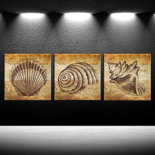 iKNOW FOTO Seashell Wall Decor Coastal Wall Art Ocean Beach Picture Framed Modern 3 Pieces Vintage Small Conch Shell Painting Print on Canvas for Bathroom Kitchen Decoration