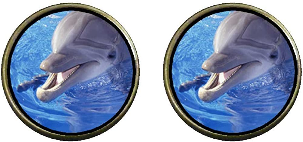 GiftJewelryShop Bronze Retro Style Smiling Dolphin Photo Clip On Earrings 14mm Diameter