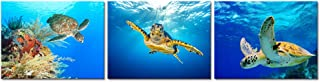 Visual Art Decor Animal Canvas Wall Art Decor Swimming Turtle Canvas Prints Underwater Sea Wall Art Decal Gallery Wrapped Ready to Hang (01)