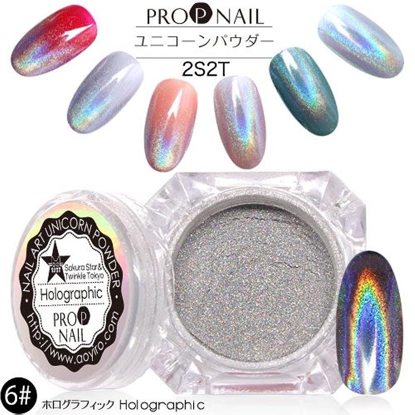 会計士ありそう合理的(6#ホログラフィック)【2S2Tマジックレインボーメタルミラーパウダー】クロムパウダー/ユニコーンパウダー/オーロラ/クロムピグメント/メタリック/鏡面/ミラー/パウダー/グリッター/パール/Magic Metal Rainbow Mirror Powder
