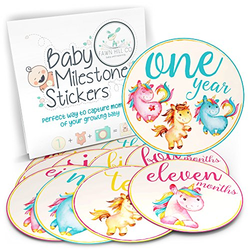 24 Monthly Stickers precut Month to Month Baby Twin gift set baby stickers Milestone stickers Baby Boy Baby Girl Safari Onepiece Jungle set