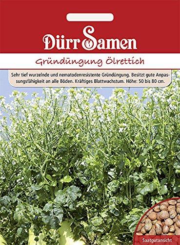 Dürr Samen - Gründüngung Ölrettich, 1kg