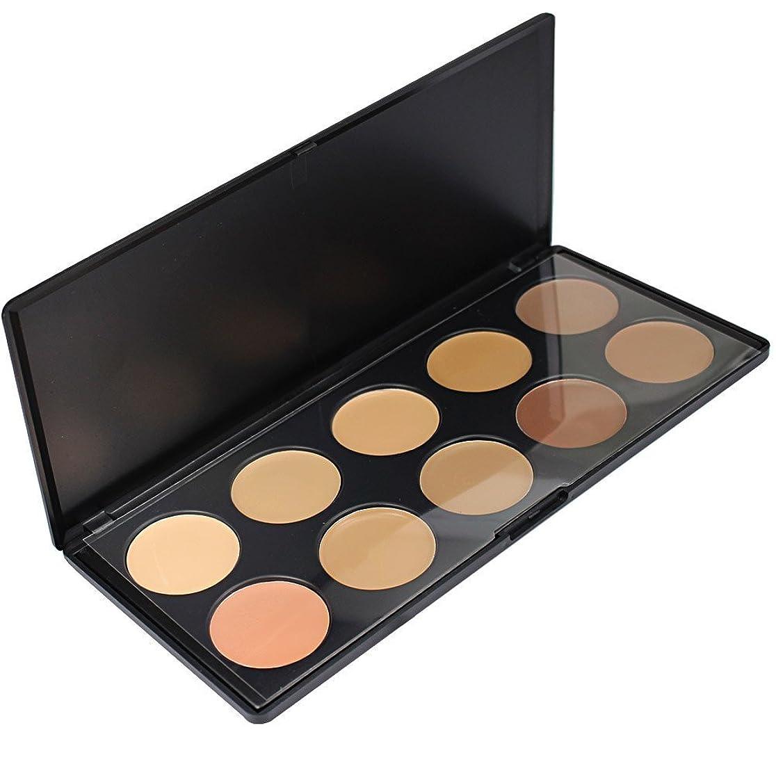 弁護士魅力弾性メイクアップエーシーシー (MakeupAcc) 10色コンシーラーパレット アイシャドウパレット メイクアップセット [並行輸入品]
