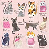 Boston International 40 Count 3-Ply Paper Lunch Napkins, Cool Cats