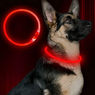 Led Dog Collar, USB Rechargeable Flash Dog Necklace Light, Pet Safety Collar Makes Your Beloved Dogs Be Seen at Night for ...