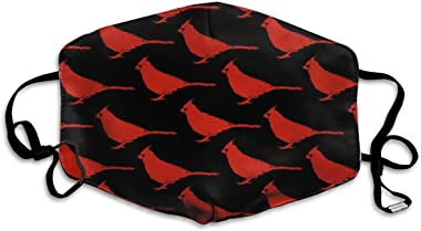 LALLRI Decorative Mouth Face Mask,Cardinal Birds Pattern1 Unisex Adult Ear Loop Face - Anti Dust Warm Cycling Mouth Various Use Mouth