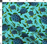 Schildkröten, Ozean, Meer, Struktur, Seetang, Blau, Grün