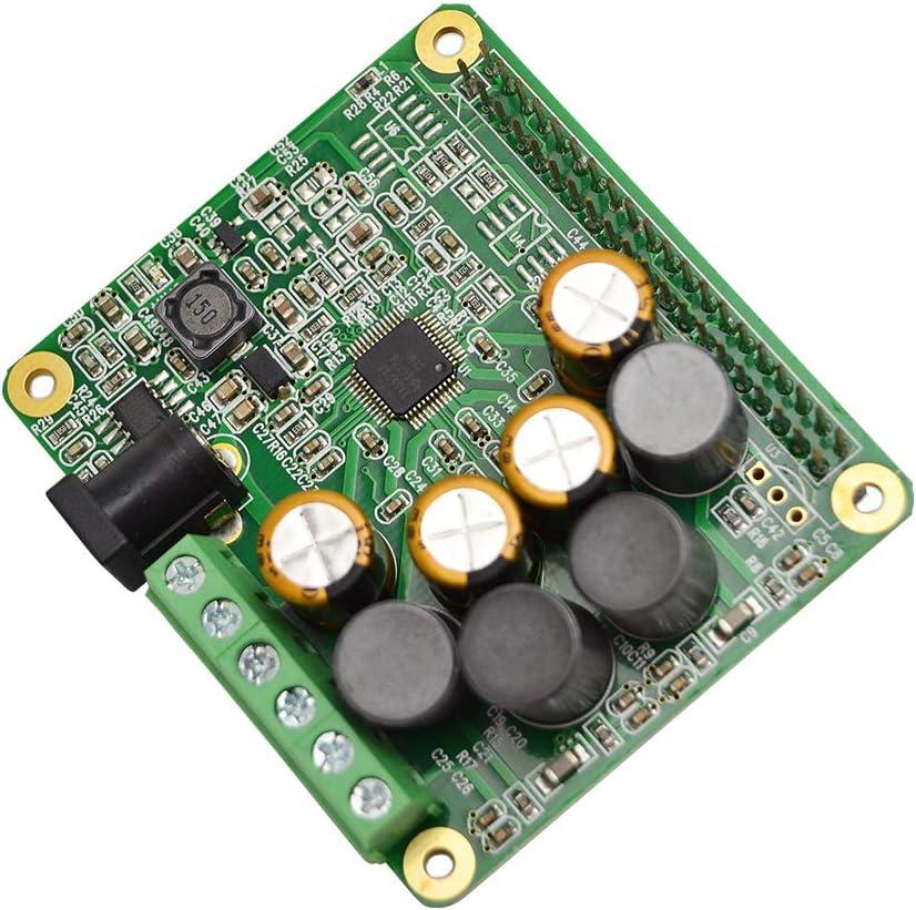 LANDZO Shipping included Superior Raspberry Pi HiFi AMP Module Audio HAT TAS5713 Amplifier
