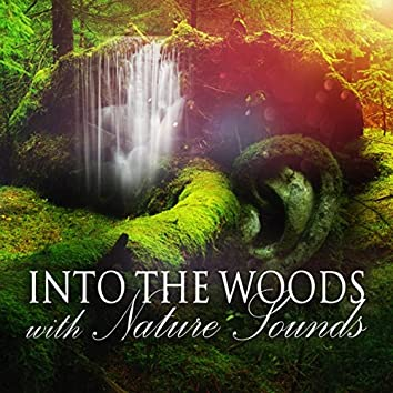 Into the Woods with Nature Sounds - Meditate with Sound of Waterfalls, Flute Music, Pure Yoga, Stress Management, Spirituality & Breathing Exercises, Meditation for Beginners, Music Relax