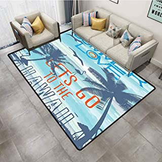 Bedroom Rug Summer Decor Collection Summer Love Lets Go to The Hawaii Sunset at Tropical Beach with Flying Birds Walking Flamingos Image Blue Stair Carpet 4'x6'