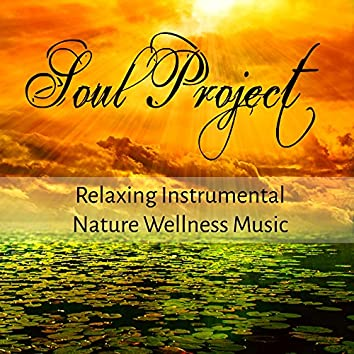 Soul Project - Relaxing Instrumental Nature Wellness Music for Pranic Energy Biofeedback Therapy and Happy Minds