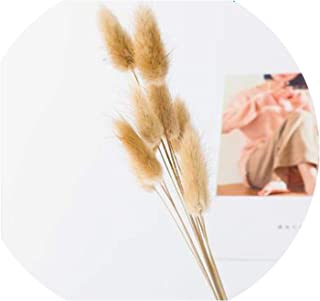 QIUHUAXIANG Dried Flowers Natural Autumn Decoration Flowers Bouquet for Pampas Grass Galvanized Lavender Wheat Scrapbooking Card Making,D