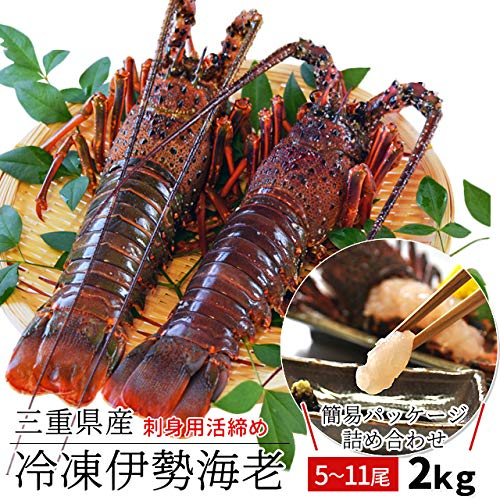 三重県産 伊勢海老 詰合せ 11尾で約2kg 刺身用 瞬間 冷凍 伊勢エビ