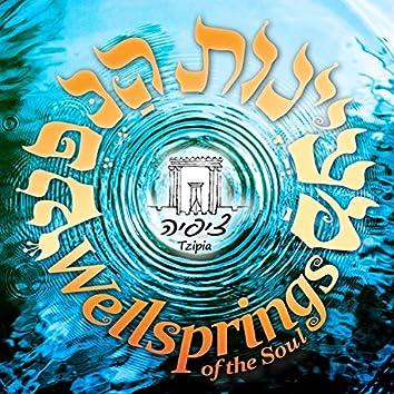 Wellsprings of the Soul