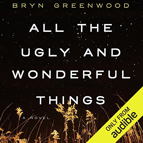 All the Ugly and Wonderful Things audiobook cover art