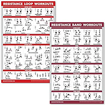 QuickFit 2 Pack - Resistance Bands and Resistance Loops Workout Posters - Set of 2 Laminated Charts - Resistance Band Tubes and Loops Exercise Charts  Laminated 18  x 27