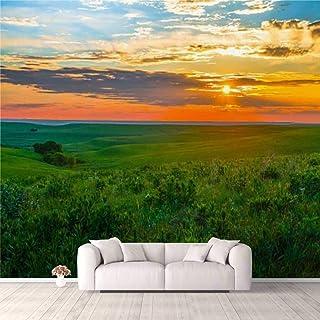Modern 3D PVC Design Removable Wallpaper for Bedroom Living Room Kansas Sunset in the Flint Hills Wallpaper Stick and Peel...