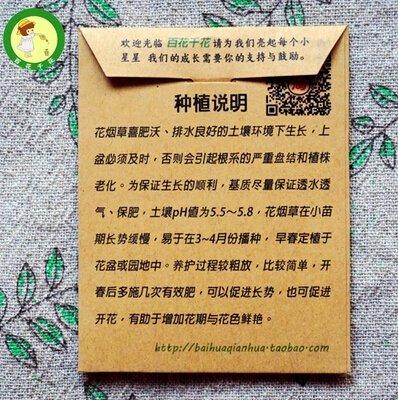 10pcs Nicotiana Graines Bonsai Fleur Embellir Graines Jasmine tabac