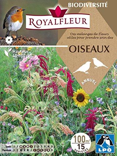 Royalfleur PFRH08667 Graines de Mélange de Fleur pour Prendre Soin Oiseaux 100 m²