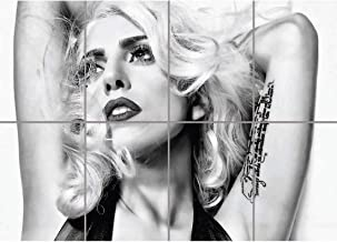 Doppelganger33 LTD Lady Gaga Black and White Wall Art Multi Panel Poster Print 47x33 inches