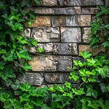 You, Me, and the Brick Wall You Built Between Us