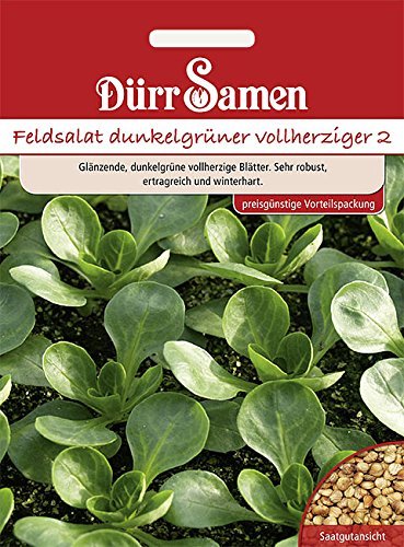 Feldsalat Dunkelgrüner vollherziger, Vorteilspackung