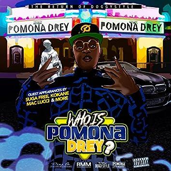 Who Is Pomona Drey?