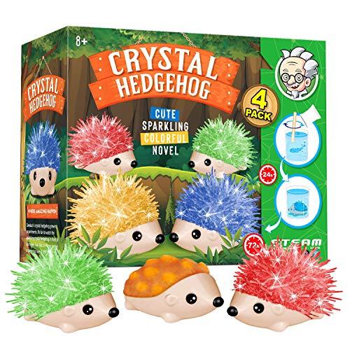 Dr. Daz Hedgehog Crystal Growing Igel Kristall Züchten Igel Spielzeug Züchten Experimentieren...