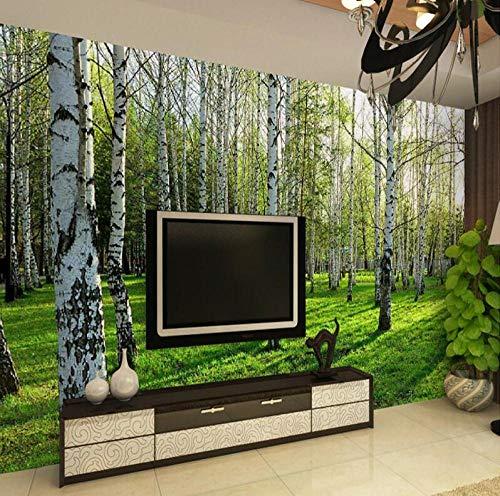 3D Driedimensionale muurschildering Woonkamer Slaapkamer Slaapbank TV Achtergrond Behang Groen Berkenbos Fotobehang 250*175 250*175