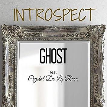 Introspect (Mirrors) [feat. Crystal De La Rosa]