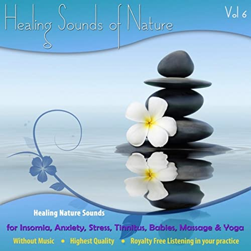 Birds By The Waterfall Bird Call Sounds With Waterfall Sounds Nature Sounds Mp3 Featuring Bird Noises And Water Sounds To De Stress By The Healing Sounds Of Nature On Amazon Music Amazon Com