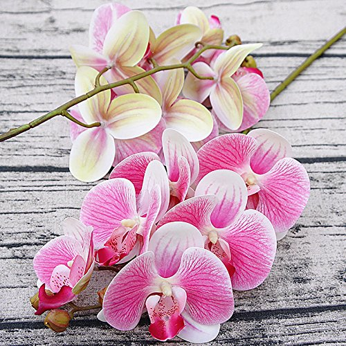 LIDEBLUE 3Pcs 3D Artificial Phalaenopsis Flowers, 27.5in Fake Moth Orchids Stem Ornament for New House Home Wedding Holiday Decoration