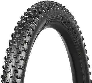 Best 20 x 2.8 bike tire Reviews