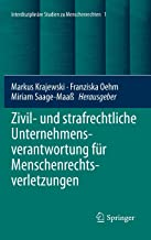Zivil- und strafrechtliche Unternehmensverantwortung für Menschenrechtsverletzungen (Interdisciplinary Studies in Human Ri...