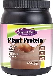 Plant Protein - Chocolate - Vegetarian - 21g Protein Per Serving -1.1 Pound