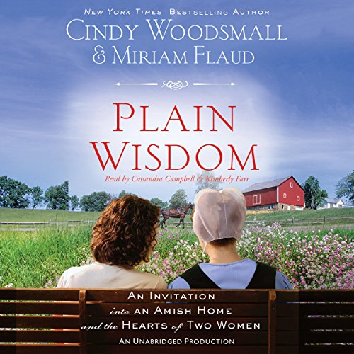 Plain Wisdom audiobook cover art