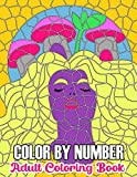 Color By Number Adult Coloring Book: Fun, Easy, and Relaxing Coloring Pages (Color by Number Coloring Books for Adults)