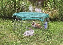 Cheap Rabbit Runs