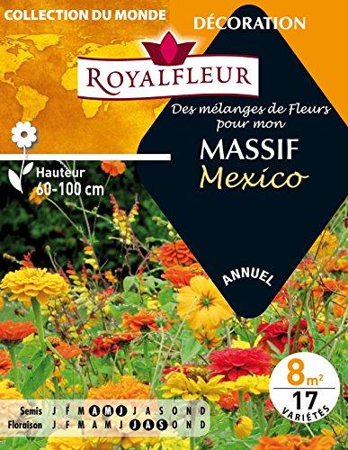 Royalfleur PFRE08802 Graines de des Mélange de Fleurs mon Massif Mexico 8 m²