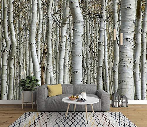 Vlies Fototapete Holz Birkenwald Schwarz Und Weiß Birke Wald Art Wand-Dekoration Moderne Motiv-Tapete Bild Design 3D Panorama Foto - 200x140CM-XL