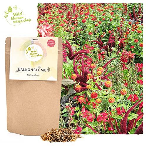 20gr Bienenfreundliche Blumen für den Balkon - Samen für Balkonpflanzen im Blumenkübel oder Balkonkasten Balkonblumen für Bienen Hummeln und Insekten