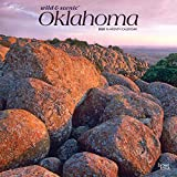 Oklahoma Wild & Scenic 2020 12 x 12 Inch Monthly Square Wall Calendar, USA United States of America Southwest State Nature (English, Spanish and French Edition)