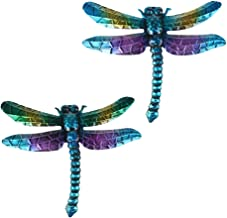 Amazon Com Large Dragonfly Wall Art