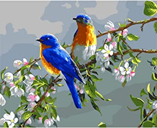 KH DIY Oil Painting Paint by Number Birds in The Branches(Birds)